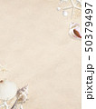背景-海-夏-ビーチ-貝殻-砂 50379497