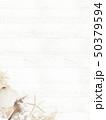 背景-海-夏-ビーチ-貝殻-砂-ウッドデッキ-白木 50379594
