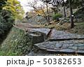 和歌山城の石畳と石垣 50382653