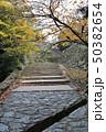 和歌山城の石畳と石垣 50382654