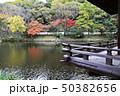 和歌山城の紅葉谷庭園 50382656