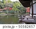 和歌山城の紅葉谷庭園 50382657