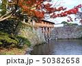 和歌山城の紅葉谷から見る御橋廊下 50382658