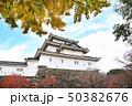 紅葉の和歌山城 50382676