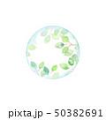 葉 球体 若葉のイラスト 50382691