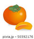 柿 秋の味覚 果物のイラスト 50392176
