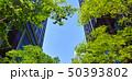 東京有楽町の新緑のビジネス街 50393802