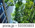 東京有楽町の新緑のビジネス街 50393803