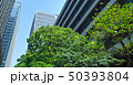 東京有楽町の新緑のビジネス街 50393804