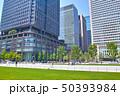 新緑の東京駅前広場の風景 50393984