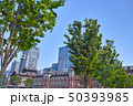 新緑の東京駅の景観 50393985
