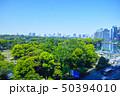 日比谷公園の森と東京の街並み 50394010