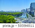 日比谷公園の森と東京の街並み 50394011