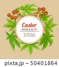 castor vector frame 50401864
