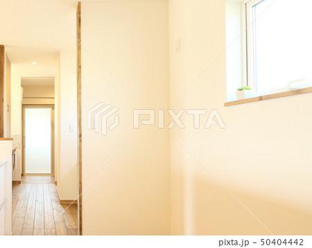 ペット同居型デザイナーズ住宅のお洒落なキッチン 50404442