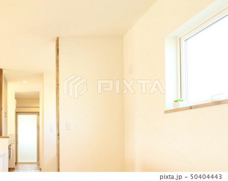 ペット同居型デザイナーズ住宅のお洒落なキッチン 50404443