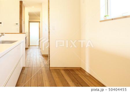 ペット同居型デザイナーズ住宅のお洒落なキッチン 50404455