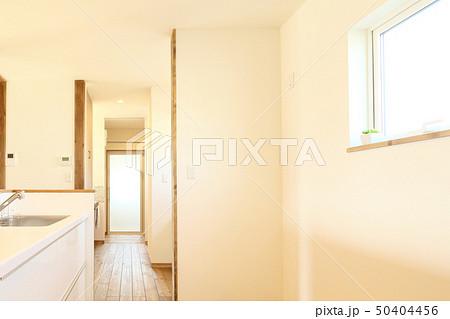 ペット同居型デザイナーズ住宅のお洒落なキッチン 50404456