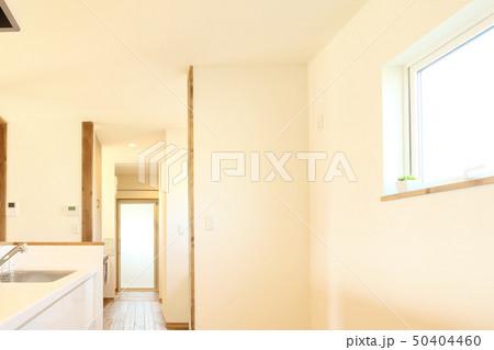 ペット同居型デザイナーズ住宅のお洒落なキッチン 50404460