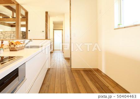 ペット同居型デザイナーズ住宅のお洒落なキッチン 50404463