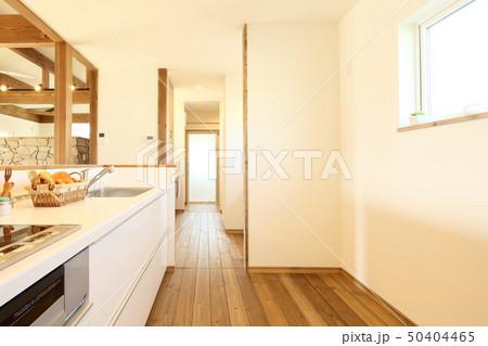 ペット同居型デザイナーズ住宅のお洒落なキッチン 50404465