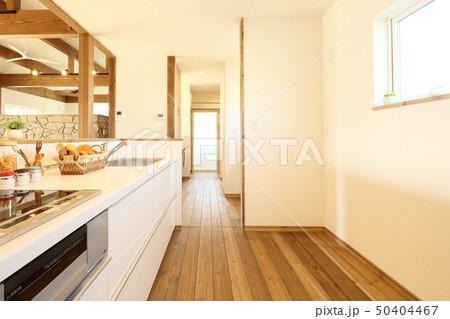 ペット同居型デザイナーズ住宅のお洒落なキッチン 50404467