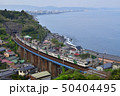 相模湾を望む鉄橋を渡る東海道線185系特急踊り子号 50404495