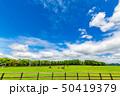 牧場 馬 雲の写真 50419379