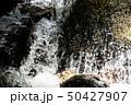 水の流れ 50427907