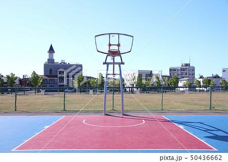新潟県長岡市 防災公園 バスケットボールコート 50436662