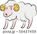 ひつじ 50437459