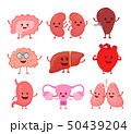 ハート ハートマーク 心臓のイラスト 50439204