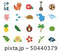 沖縄 素材集1 50440379