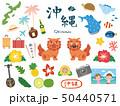 沖縄 素材集3 50440571