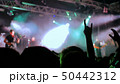 Silhouettes of people partying at rock concert 50442312
