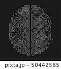 Brain Shape Maze Vector Design. Solve Problem Concept 50442585