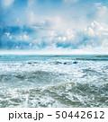 Tropical sea background 50442612