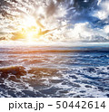 Sky and tropical ocean background 50442614