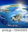 インドネシア セレベス スラウェシ島のイラスト 50443005