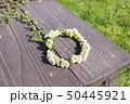 シロツメクサの花の冠 50445921