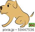 犬のフン 50447536