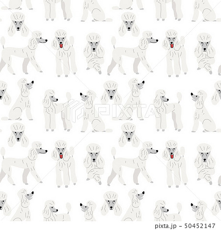 poodle in action,seamless pattern 50452147