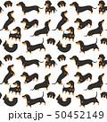 わんこ 犬 ベクタのイラスト 50452149
