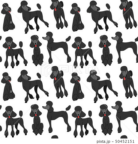 black poodle in action,seamless pattern 50452151