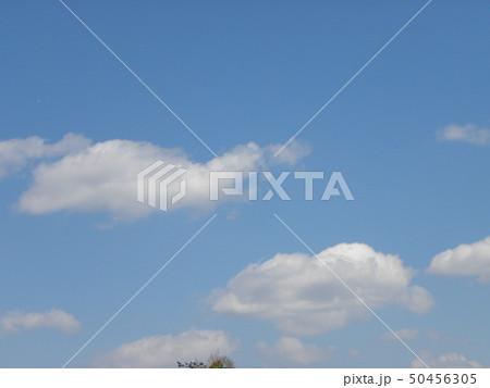 春の青空と白い雲 50456305