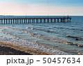 桟橋 海 浜辺の写真 50457634