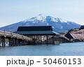 (青森県-風景)鶴の舞橋と岩木山5 50460153