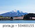 (青森県-風景)鶴の舞橋と岩木山3 50460155