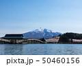 (青森県-風景)鶴の舞橋と岩木山2 50460156