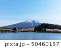 (青森県-風景)鶴の舞橋と岩木山1 50460157